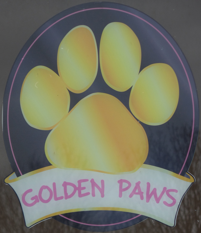 Golden Paws2 (alternative)